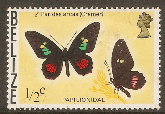 Belize 1974 ½c Butterflies series. SG380.