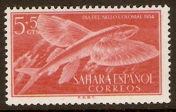 Spanish Sahara 1954 5c +5c Red - Colonial Stamp Day. SG113.