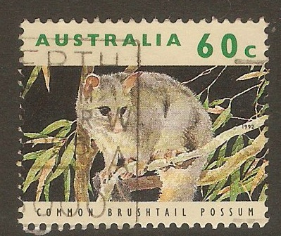 Australia 1992 60c Common bushtail possum. SG1365.