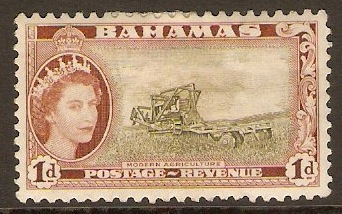 Bahamas 1954 1d Olive-green and brown. SG202.