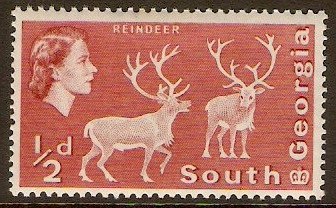 South Georgia 1963 ½d Brown-red. SG1a.