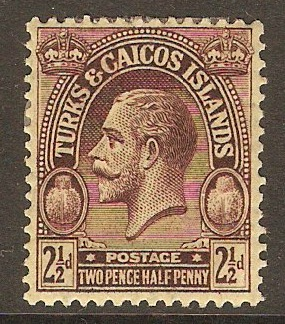 Turks and Caicos 1922 2½d Purple on pale yellow. SG167.