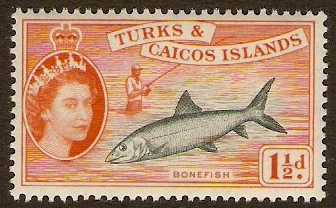 Turks and Caicos 1957 1½d Grey-green and orange. SG238.