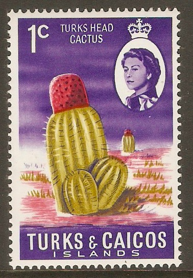 Turks and Caicos 1971 1c Turk's-head Cactus Stamp. SG333.