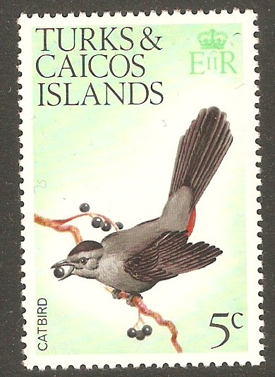Turks and Caicos 1973 5c Birds Series. SG386.