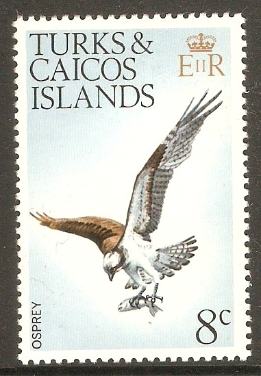 Turks and Caicos 1973 8c Birds Series. SG388.